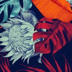 hellohelo_illustration White or colorfull ? #pattern #dotwork #illustration #tropical #jungle #leaf #colorfull #surfacespatterns