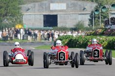 Alfas at the Goodwood Revival