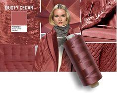 Pantone colore Dusty Cedar.