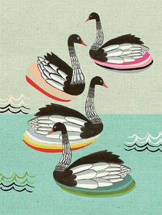 Swanning about...
