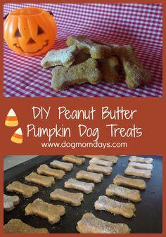 DIY homemade peanut butter pumpkin dog treats!