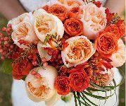 Галерея - Parfum de Grasse ® (ADAvorjap) :: Энциклопедия роз