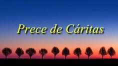 """PRECE DE CÁRITAS Qual a origem e história da Prece de Cáritas? A prece de Cáritas tem sido constantemente orada por várias gerações de espíritas, umbandistas e espiritualistas. Quando recitada com a entonação correta, é uma prece de proteção extremamente eficaz, mesmo para iniciantes. Diz-se que """"CÁRITAS"""" era um espírito que se comunicava através da médium Madame W. Krell, num grupo de Bordeaux (França), sendo ela uma das maiores psicografas da história do espiritismo A prece de Cáritas foi…"""