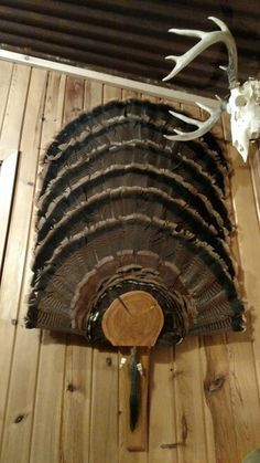 Weathered Oak Turkey Fan Mount Harvest Plaques Turkey
