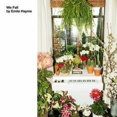"""Lana Del Rey Teams With Emile Haynie for """"Wait for Life"""" From All-Star Album We Fall Brian Wilson, Lykke Li, Father John Misty, the xx's Romy Madley Croft, Randy Newman also on producer's album"""