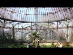 Filme Garrincha - Estrela Solitaria 2003 Completo ( Cinema Nacional ) - YouTube