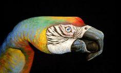 Guido Daniele (Hand Painted Body Art)
