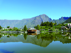 Mauritius, Excursion, Hotels, Tours, Island, Mountains, Travel, Humpback Whale, White Sand Beach
