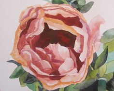 ORIGINAL watercolor painting, peony flower, 8X10 inches,  pink, green