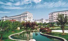 chinese universities - Pesquisa Google