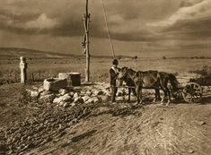 Romania People, Barbarian, Where The Heart Is, Old Photos, Past, Europe, Horses, Water, Instagram Posts
