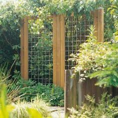 Image result for diy plant trellis concrete mesh with border