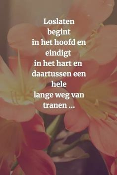 Oh man so me nu. Words Of Wisdom Quotes, Text Quotes, Wise Words, Pretty Words, Beautiful Words, Color Quotes, Dutch Quotes, Wish Quotes, Strong Quotes
