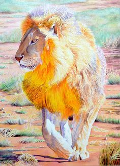 Wildlife Painting Lion African Animal by MattPriceWatercolors, $599.00