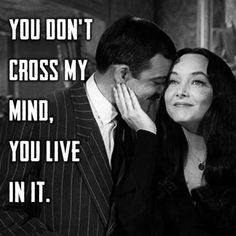 10 New Beautiful Love Quotes And Love Sayings Adams Family Quotes, Die Addams Family, Morticia And Gomez Addams, Under Your Spell, Beautiful Love Quotes, Dark Love Quotes, My Sun And Stars, Ms Gs, Family Love