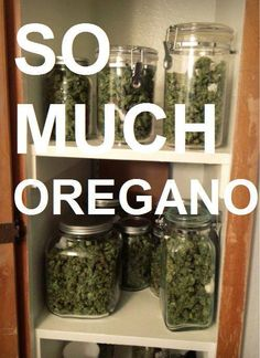 can never have too much 'oregano'..  lol