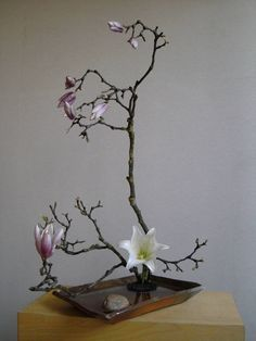 Blütenbaum ikebana