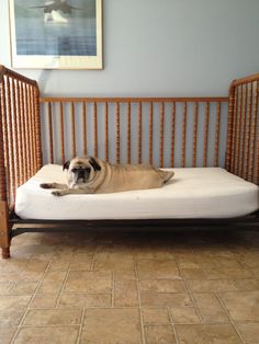 turned old crib into a bed for one very spoiled dog!