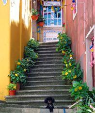 Short break to Tivoli Palace Sintra, Portugal