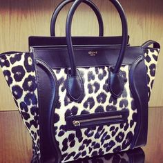 Cheetah. ♡