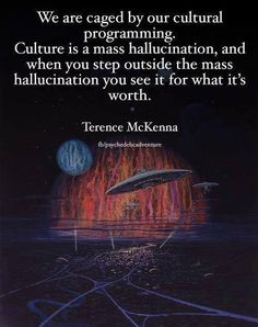 We are caged by our cultural programming. Culture is a mass hallucination, and when you step outside the mass hallucination, you see it for what it's worth. Unplug from the Matrix . Spiritual Enlightenment, Spiritual Awakening, Terence Mckenna, For What It's Worth, Awakening Quotes, Illuminati, Thought Provoking, Mindfulness, Thoughts