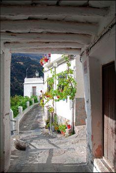 La Alpujarra de Granada.Adoro esas parras plantadas en la calle que sirven para dar sombra en el piso superior , me encanta.