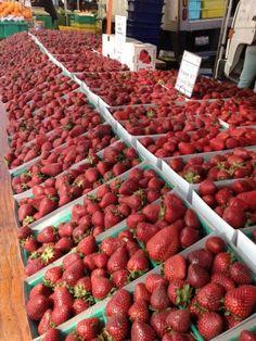 Farmers Market Strawberry Gratin