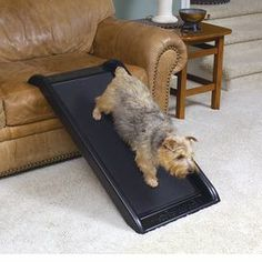 """Pet ramp with a treaded surface and built-in handles.  Product: Pet rampConstruction Material: PlasticColor: BlackDimensions: 39.5"""" H x 20"""" W x 5.1"""" D"""