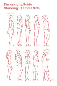 Collection of women standing in side profile with assorted positions and postures. The average height of these casually dressed females is set at 5'4"