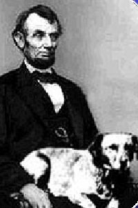 Abraham Lincoln's Yellow Mutt