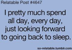 I pretty much spend all day, every day, just looking forward to going back to sleep