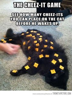 The cheez-it game…