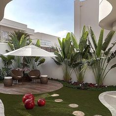 Tropical Backyard Ideas: Beautifully Refreshing Decors to Copy – front yard design modern Tropical Landscaping, Front Yard Landscaping, Landscaping Ideas, Tropical Gardens, Outdoor Landscaping, Palm Trees Landscaping, Landscaping With Boulders, Acreage Landscaping, Florida Landscaping