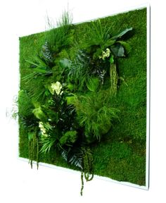 A simple yet beautiful idea to create your own #Living #Wall : We provide you with the plants, #plant #substrates and the proper #expertise which allows you to create a #colorful #Green #Wall that would #breathe #life into your #homes.
