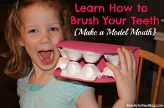 Your Teeth: Learn How to Brush Your Teeth {Make a Model Mouth} #homeschool human body activity, Apologia Anatomy dental health month activity