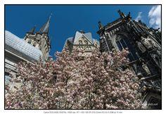 Aachener Dom im Frühling #petermarbaise #tuxoche