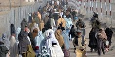 More than 350,000 Afghan refugees return from Pakistan: UN