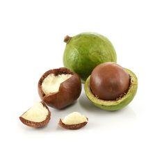 Las nueces de macadamia contienen omega-7, un ácido graso presente en el folículo capilar de forma natural. Este ingrediente ayuda a recuperar y aportar una dosis de nutrición sin engrasar el cabello.