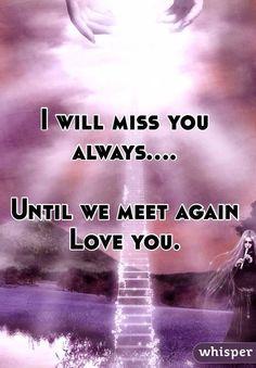 siggno videos till we meet again