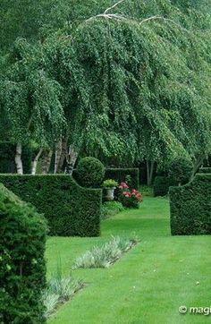 Advice on everything gardening Formal Gardens, Outdoor Gardens, Beautiful Landscapes, Beautiful Gardens, Classic Garden, Backyard Paradise, Garden Landscape Design, Garden Structures, Outdoor Landscaping