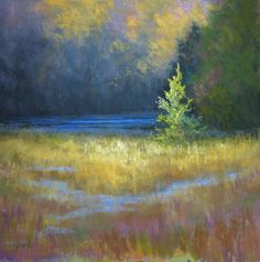 "©2011 Paula Ann Ford, Pine in the Spotlight. Soft Pastels on board, 12""x12"" #Adirondack"