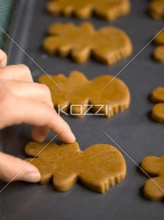 close-up shot of hand placing gingerbread cookie in tray. - Detailed shot of human hand placing uncooked gingerbread cookie in tray.