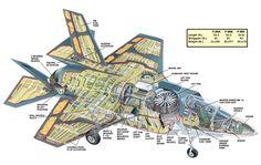 F-35B_cutaway.jpg (1113×703)