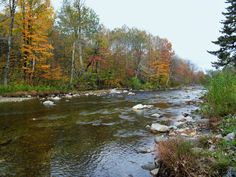 Trout River behind Phineas Swann Bed and Breakfast in Montgomery Center, Vermont. Photographed by Tim Prevett