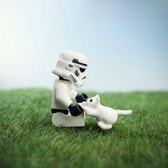 Trooper Kitten by Mike Stimpson