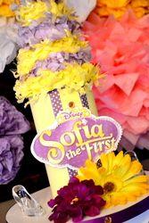 "Sofia the First/disney jr / Premiere Movie Party ""Sofia the First Princess"" | Catch My Party"