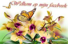 Welkom op mijn FB