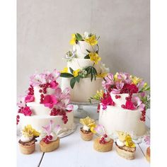 Spread of cakes for a wedding by Lily Vanilli