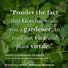 Sermon in a Sentence, Vol. Catherine of Siena St Catherine Of Siena, Saint Quotes, Catholic Quotes, Garden Quotes, Favorite Quotes, Bible Verses, Prayers, Inspirational Quotes, Wisdom