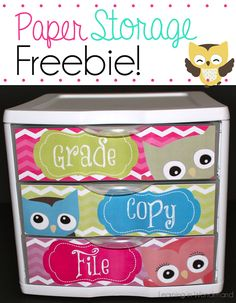 For my owl teacher friends....To Do Drawers -  Owl Themed